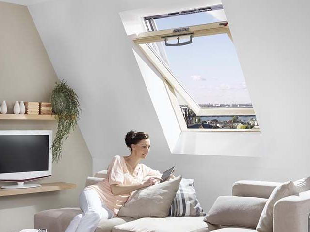 RotoQ Schwingfenster